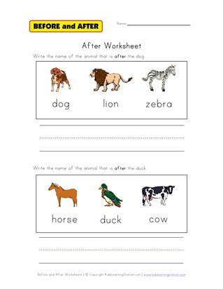 after worksheet animals