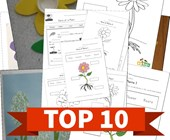 Top 10 Plants Kids Activities