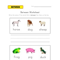 between worksheet animals