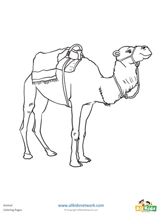 Free Printable Camel Coloring Pages For Kids | 440x327