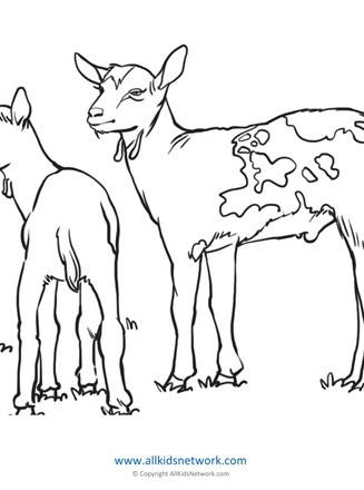 Goat Coloring Page All Kids Network