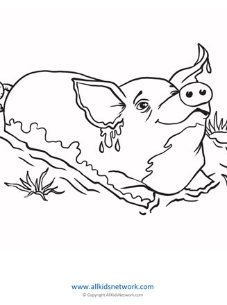 Minibeast Colouring Pages | 440x327