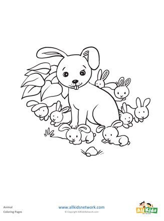 Rabbits Coloring Page All Kids Network
