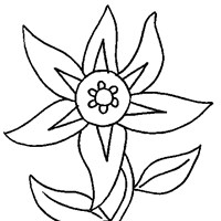 flower coloring page coloring page