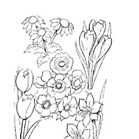 flower mix coloring page