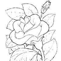 flower rose coloring page