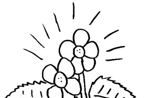 flower with pedals coloring page