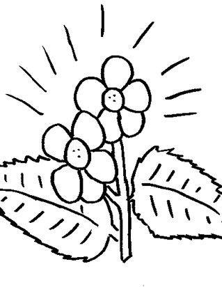 Flowers Coloring Pages - Print Flowers Pictures to Color | All Kids ...
