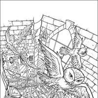 harry potter 8 coloring page