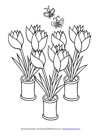 tulips coloring page
