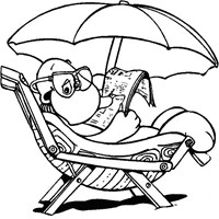 turtle beach chair coloring page