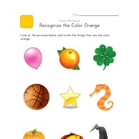 Recognize Orange