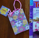 gift bag notebook craft