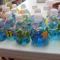 Creation Aquariums Craft