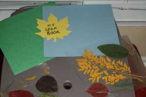 Leaf Book Craft