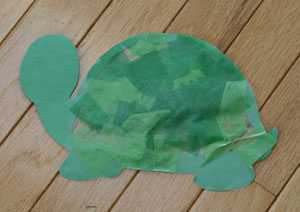 back of turtle craft