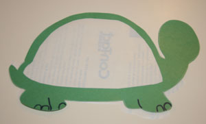 making turtle craft