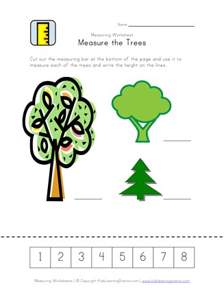 measurement worksheet trees