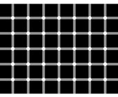 Dots Illusion - Kids Optical Illusions