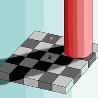 Checker Board Illusion - Kids Optical Illusions