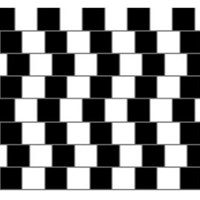 Parallel Lines Illusion - Kids Optical Illusions