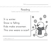 Winter Reading Comprehension Worksheet