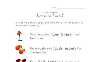 single or plural worksheet