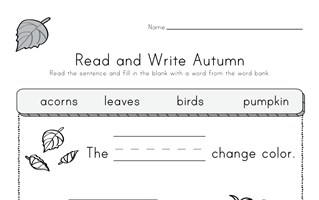 Fall Read and Write Worksheet