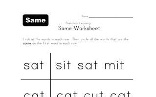 same word worksheet