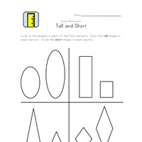 tall and short height worksheet