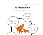 All About Fish Worksheet