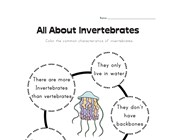 All About Invertebrates Worksheet