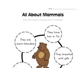 All About Mammals Worksheet