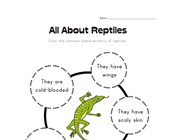 All About Reptiles Worksheet