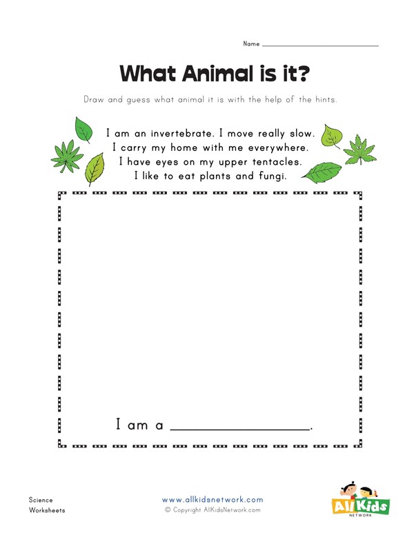 What Animal Is It Snail Worksheet All Kids Network