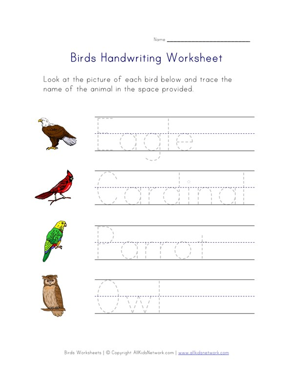 Birds Themed Handwriting Worksheet | All Kids Network