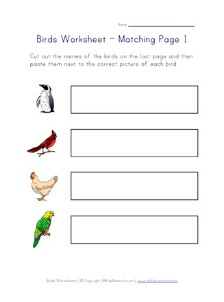 birds matching worksheet