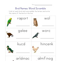 birds word scramble worksheet