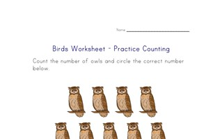 counting worksheet - number thirteen
