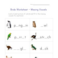 missing letters birds worksheet