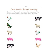 farm matching worksheet