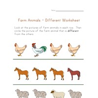 preschool different worksheet