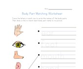 body matching worksheet