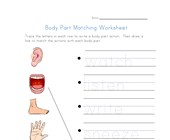 body actions matching worksheet