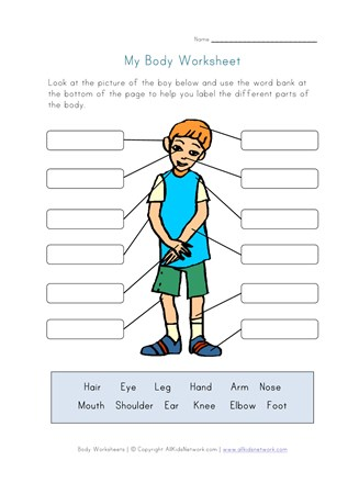 Body Parts Worksheet for Kids | All Kids Network