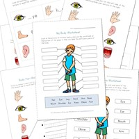 Body Worksheets