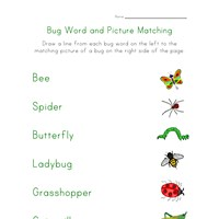 bugs worksheet matching