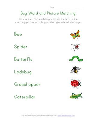 Bug Worksheets All Kids Network