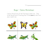 bugs same worksheet