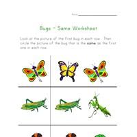 Worksheets For Parts Of Speech Pdf Bug Worksheets For Kids  All Kids Network Math Warm Up Worksheets Word with Worksheet In Math Pdf  Henry Ford Worksheet Excel